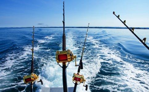 Рыбалка в акватории Дубая, Абу-Даби или Рас аль Хэймы
