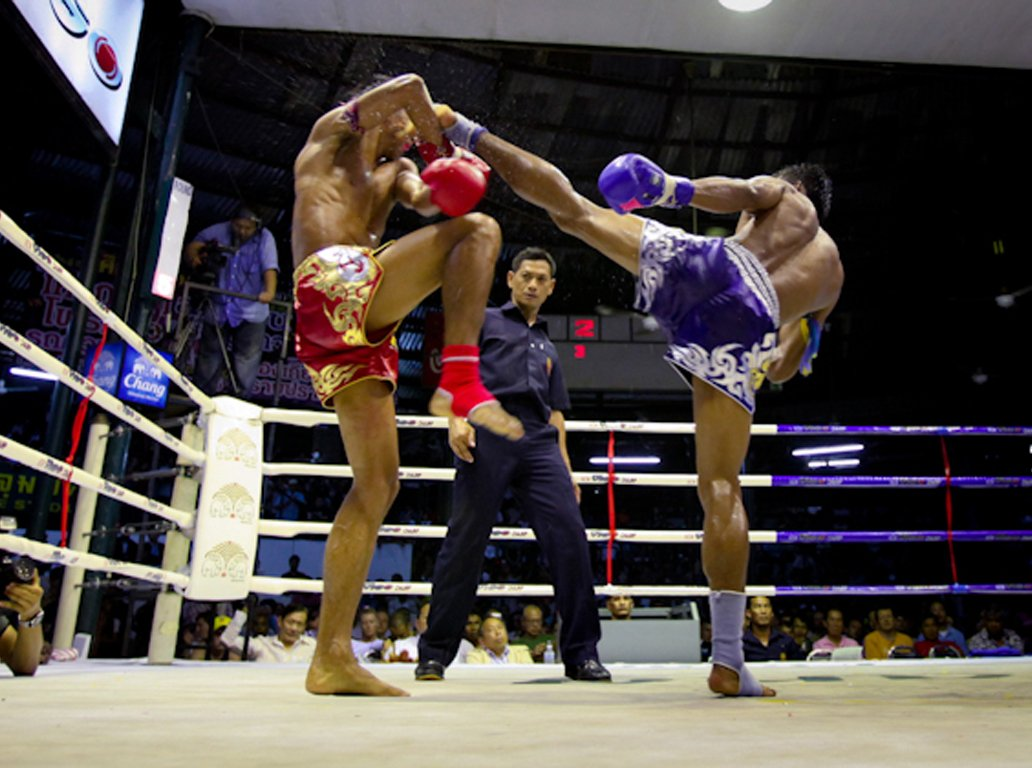 Тайский бокс. Сезон 2018-2019