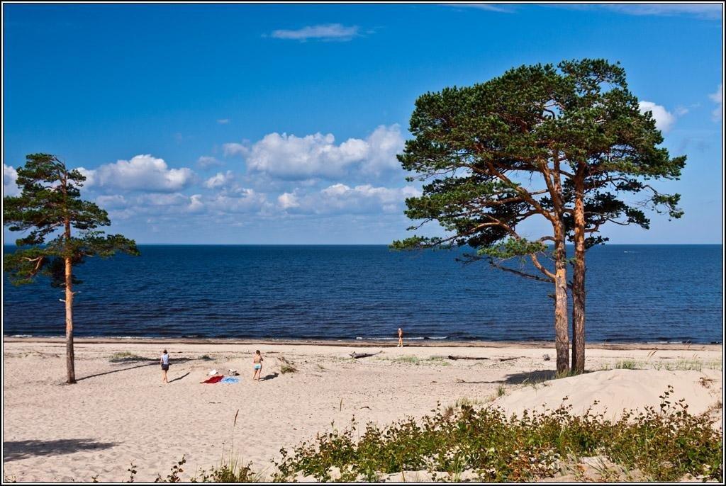 Белое море пляж фото