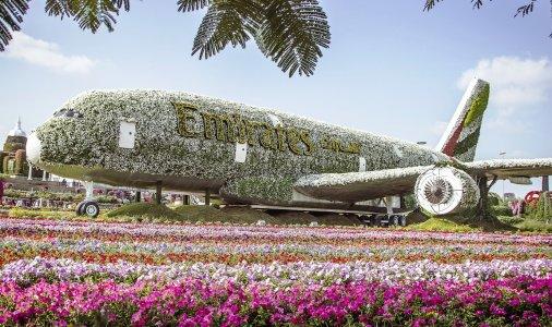 Парк цветов и Всемирная Деревня