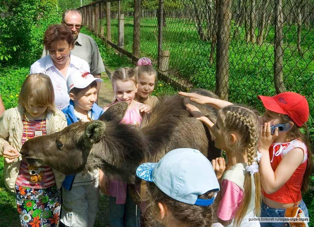 Детская обзорная экскурсия по Костроме (Ипатьевский монастырь по запросу, также как и мастер-классы)