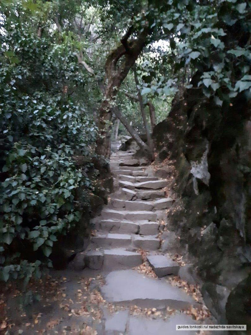 «Тайны и загадки графского парка»