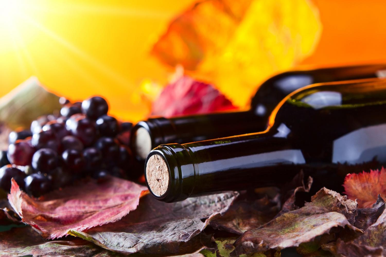 Санта-Барбара, Солванг и дегустация калифорнийских вин