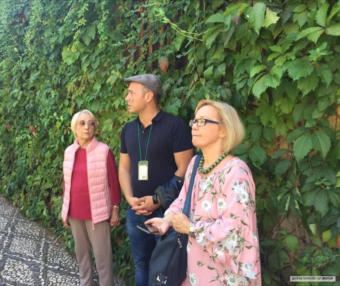 Экскурсия по Альгамбре и садам Хенералифе с аккредитованным гидом