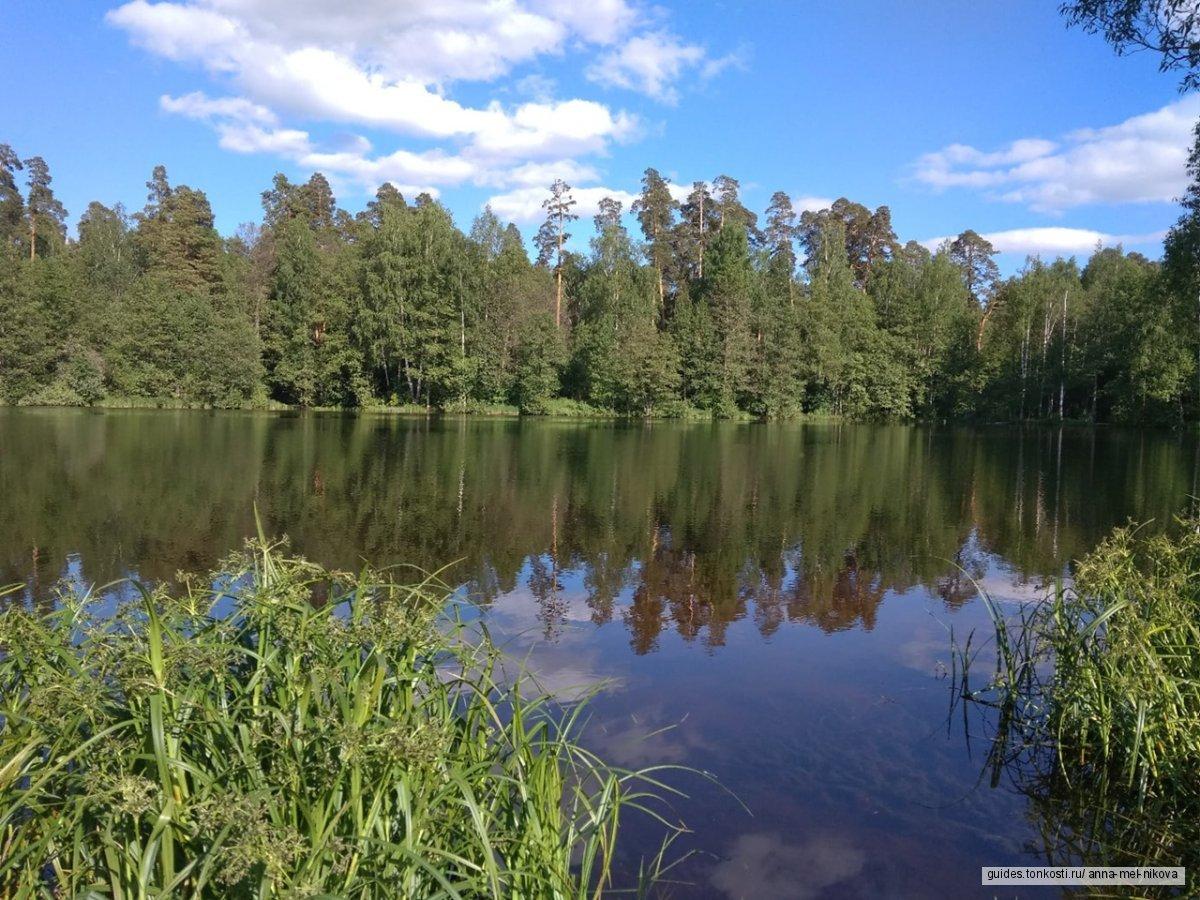 История и природа Палеха