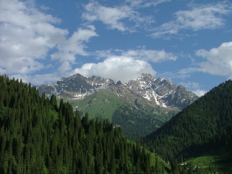 «...Лучше гор могут быть только горы, на которых ещё не бывал...»