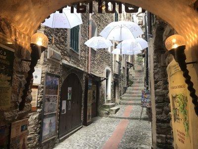 Старинные Дольчеаква, Априкале — гастрономия и вино Лигурии