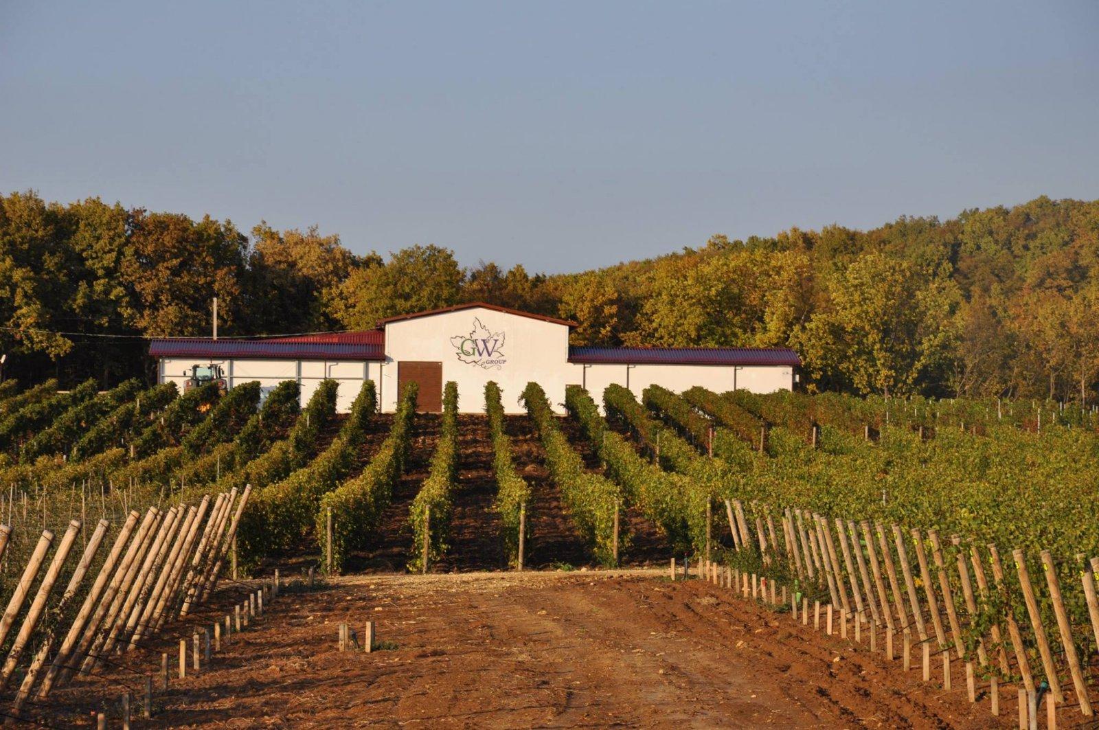 Экскурсия с дегустацией на винодельню Gunko Winery