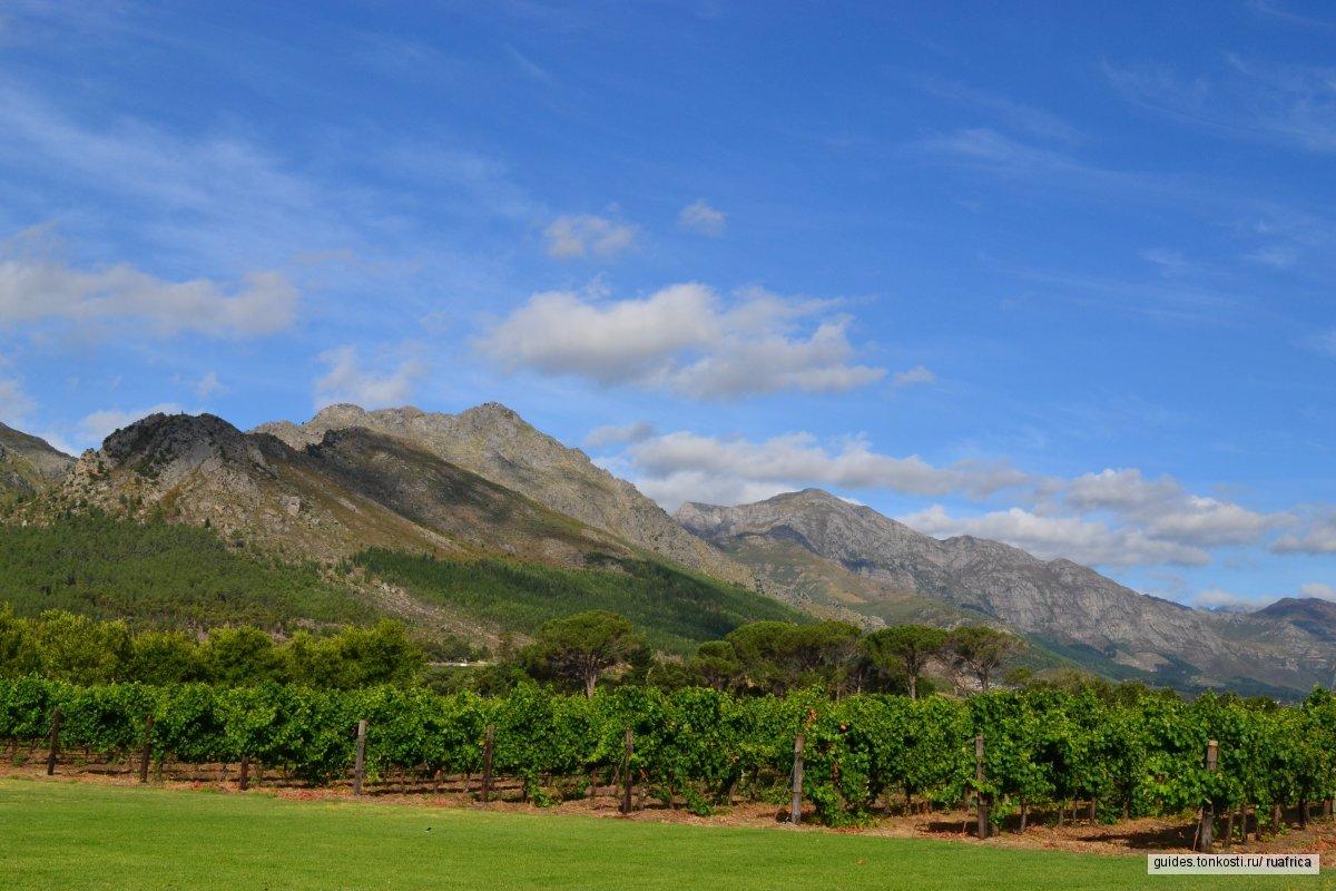 Тур по винным долинам Кейптауна