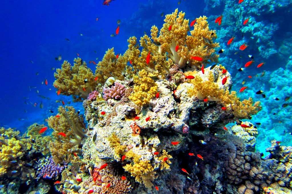 Гифтун — райский остров!