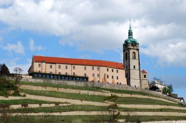 Виноградники Святой Клары и замок Мельник