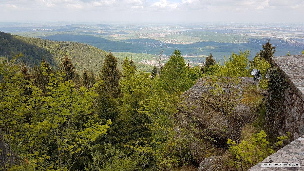 Винная дорога Эльзаса