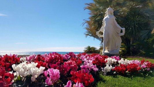 Сан-Ремо — столица цветов и песен