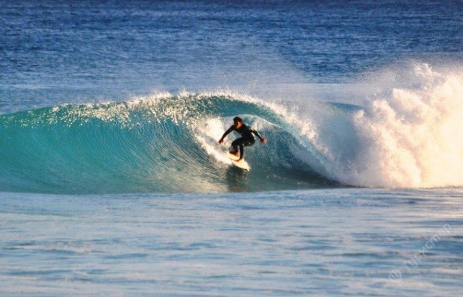 Активная экскурсия для любителей серфинга, игры в гольф или конных скачек