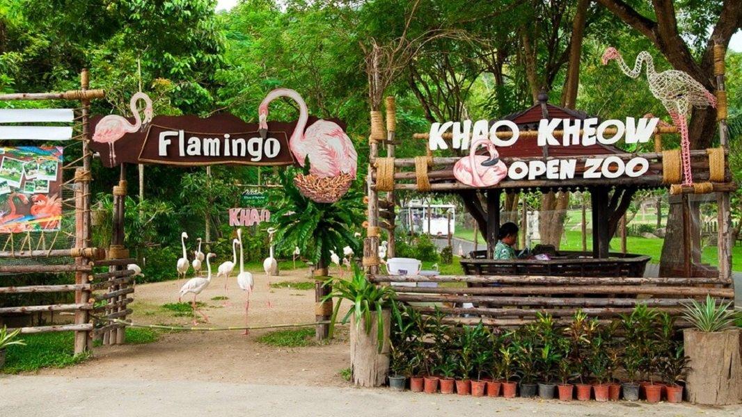 Зоопарк Khao Kheow + Moo Baan Chon Pao + Традиционный тайский парк
