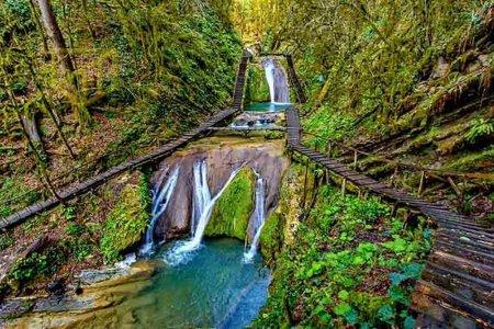 33 водопада, застолье и тюльпановое дерево