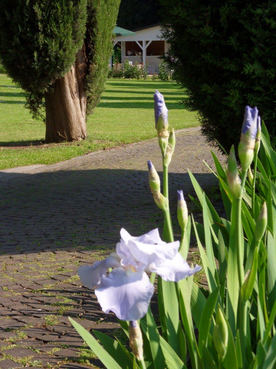 Боргетто — речная жемчужинка и (или) волшебный Парк-Сад Сигурта