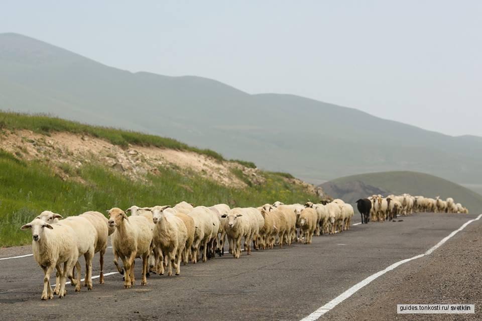 Самые красивые места Армении за два дня