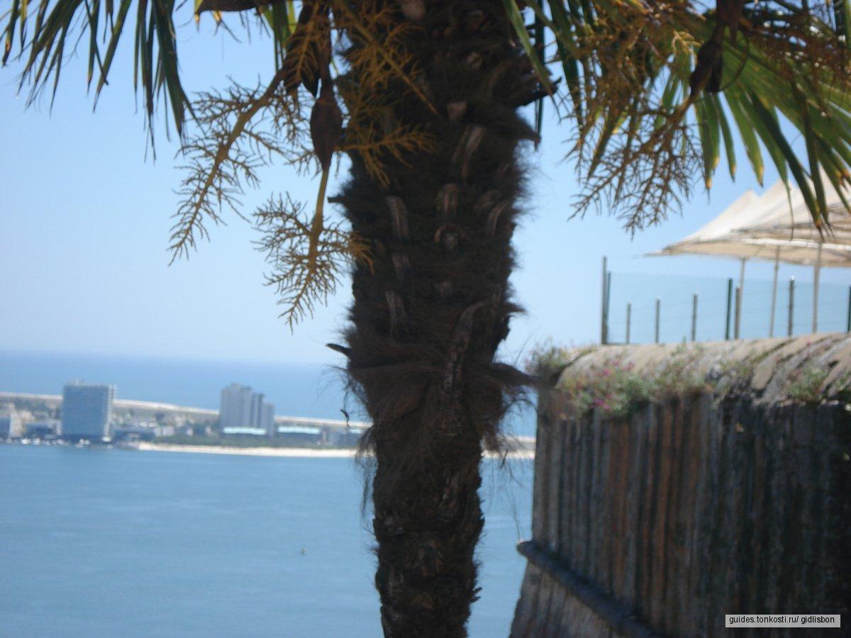 Красивые пейзажи: Алмада, Сетубал, Аррабда