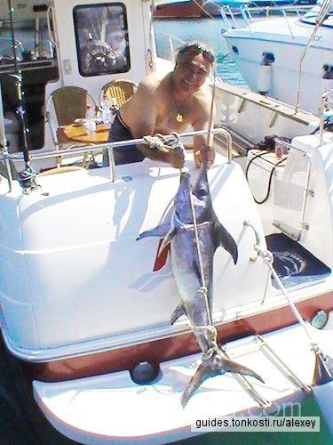 Рыбалка на море на быстроходном катере