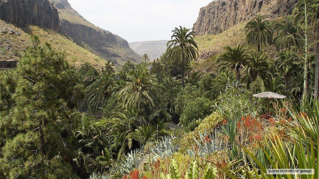 Пальмитос-парк и Пуэрто-де-Моган