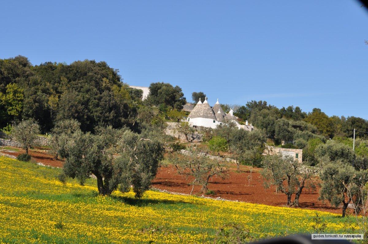 Однодневный велотур «Альберобелло и долина трулли»