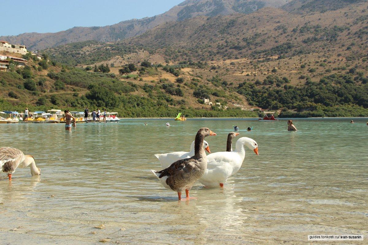 Мини-группа «Западный Крит» (9-местный микроавтобус)