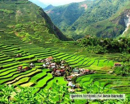 Уникальные Рисовые террасы Банауэ и Мастер Тату Калинга 100-летняя Ванг Од