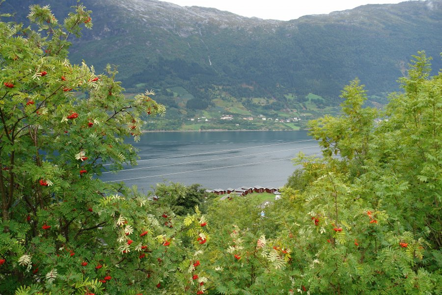 Экскурсия в Дрёбак и Халден из Осло