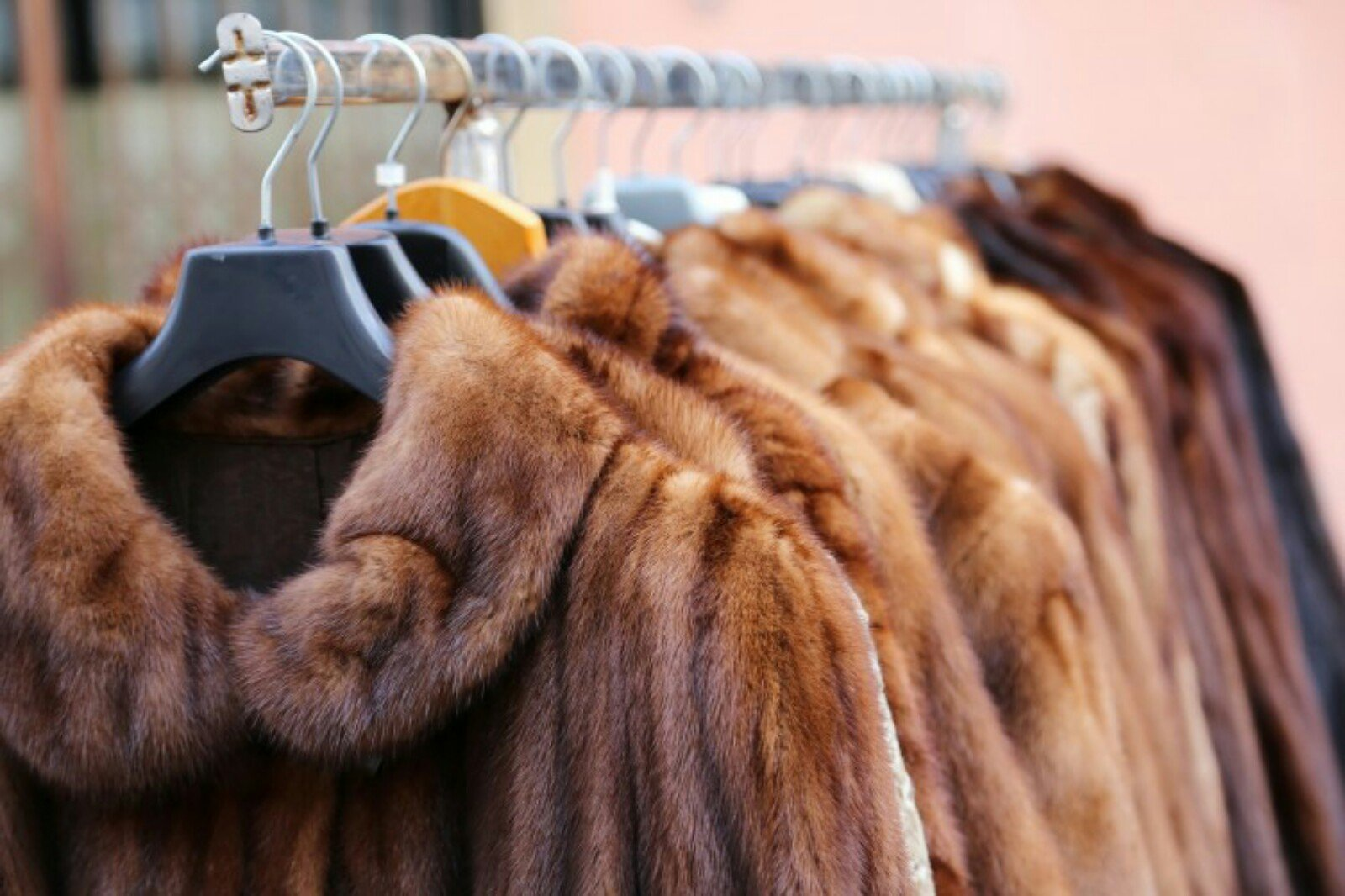 Шоппинг-тур по фабричным магазинам кожи и меха