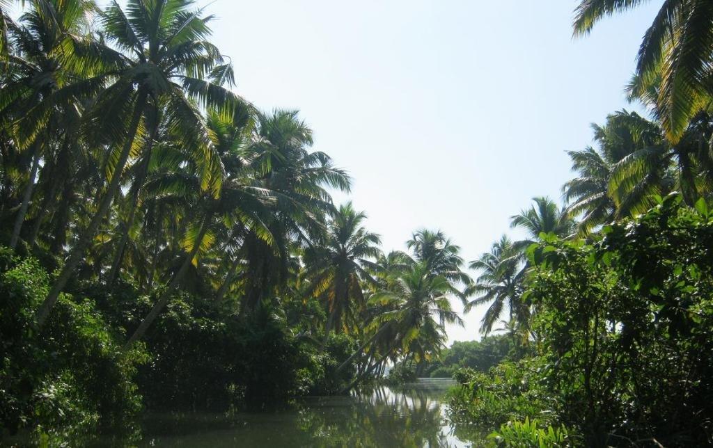 Бангалор — Майсур — Керала