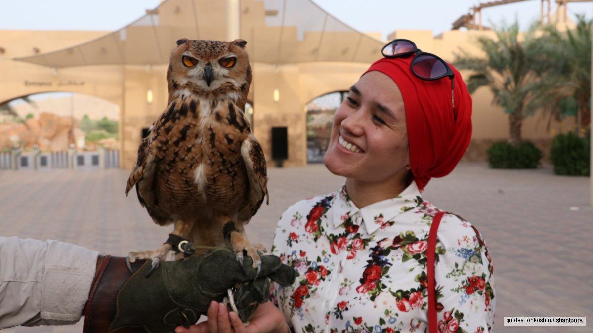 Обзорная экскурсия по Аль-Айн с обедом (горячие источники)