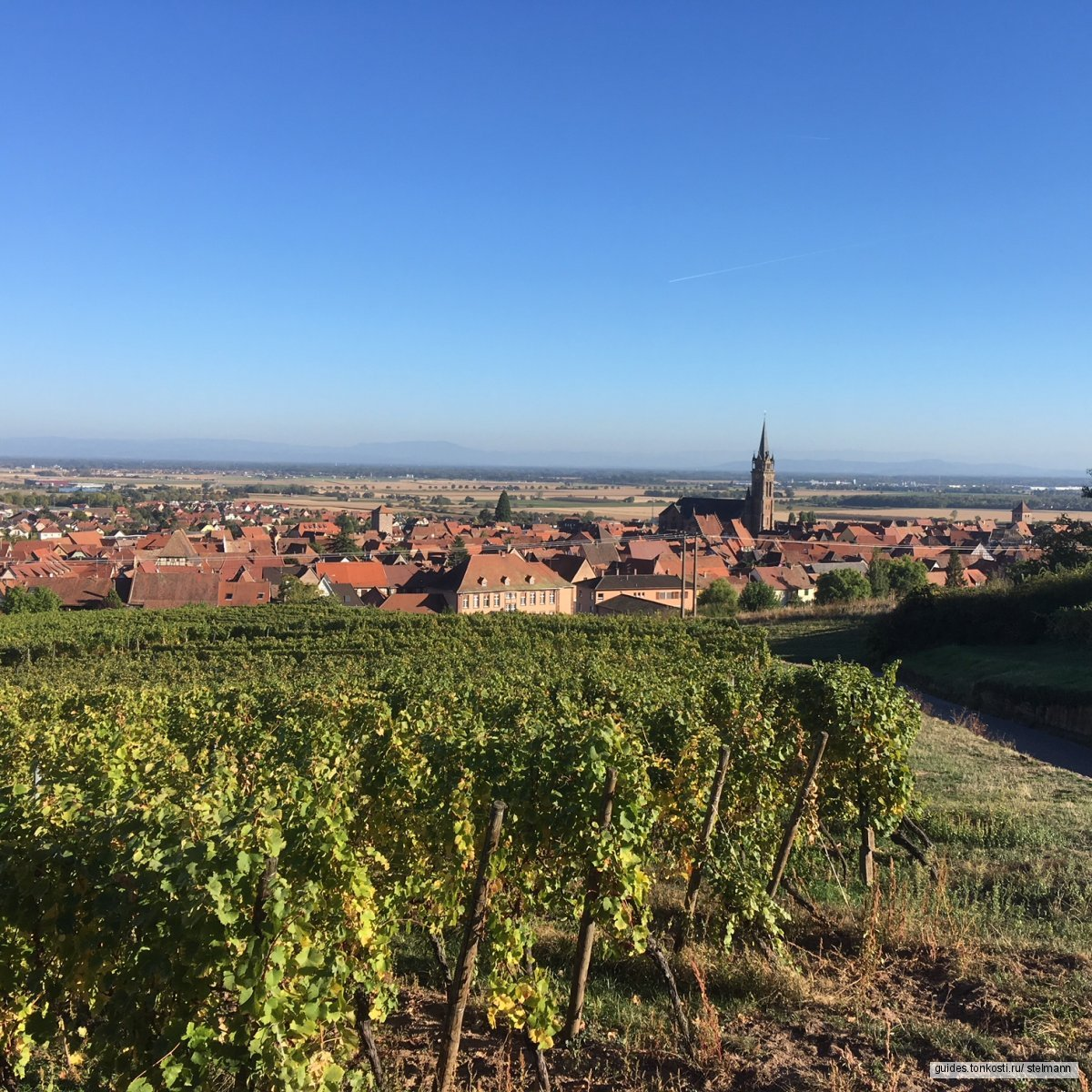 Винная дорога Эльзаса — Route des vins d'Alsace