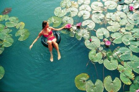 Целебное озеро Хевиз в однодневном VIP-туре вокруг «венгерского моря» — знаменитого озера Балатон