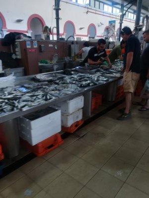 Знакомство с гастрономией. Рыбный рынок