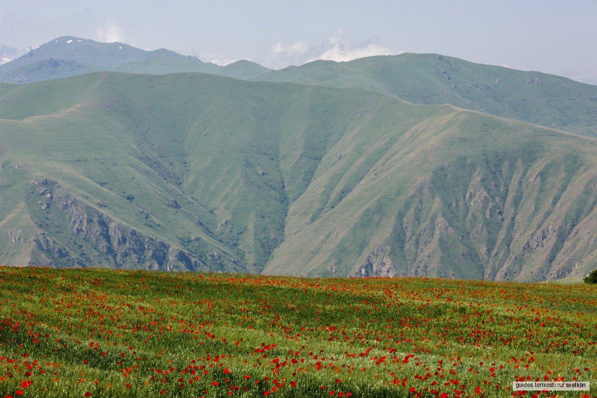 Татев + Хор Вирап — однодневная поездка по югу Армении