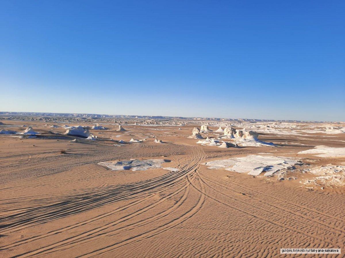 Национальный парк Белая пустыня: отдых на природе, сафари