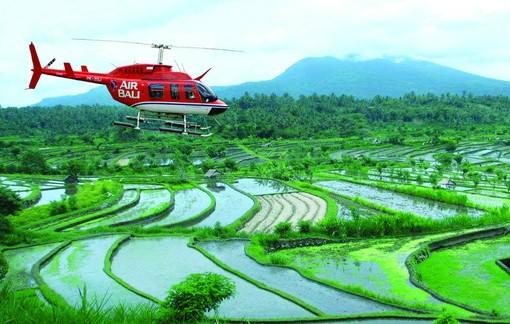 Прогулка на вертолете