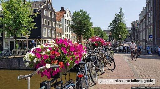 Амстердам + Гаага за один день !