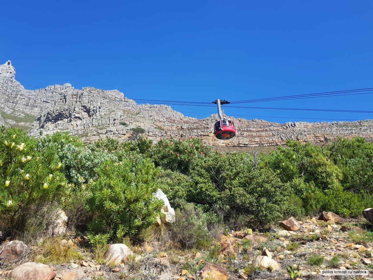 Восхождение на Столовую гору и обзорная в Кейптауне