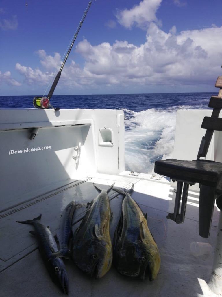 Рыбалка в Атлантическом океане