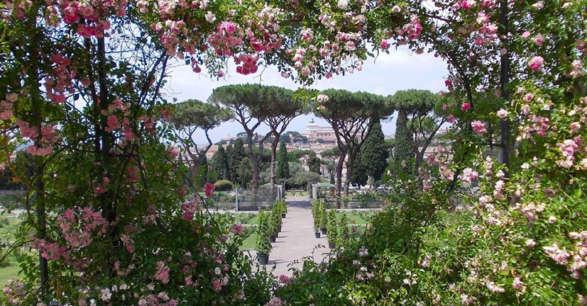 Нетрадиционными дорогами Рима, или О чем же говорят Уста истины?