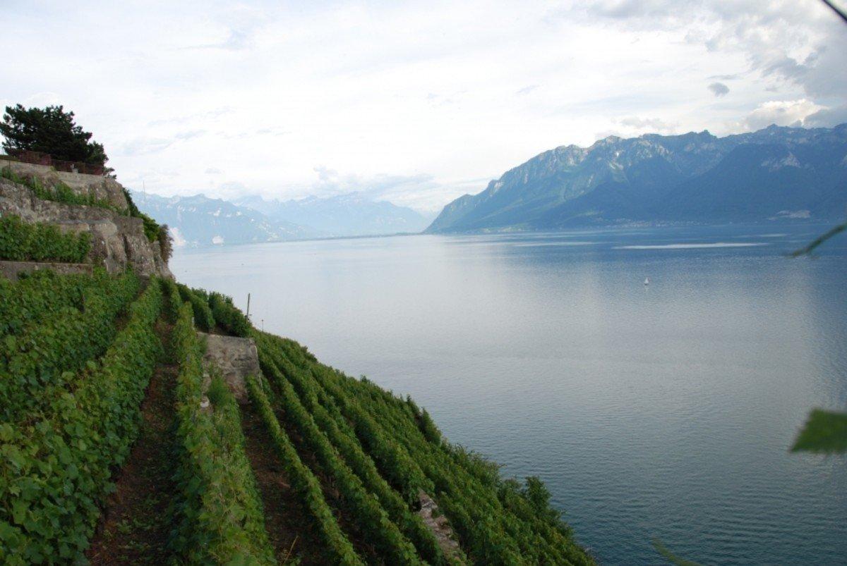 Авто-пешеходная экскурсия по Швейцарской Ривьере