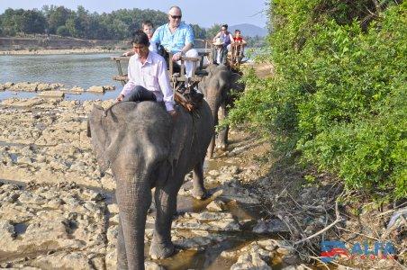 Даклак — деревня слонов и водопадов