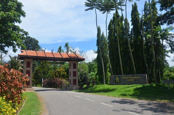 Ботанический парк Теном