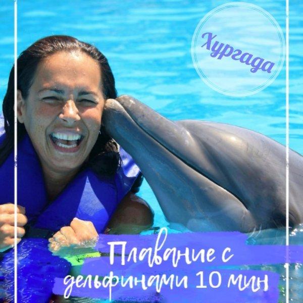 Плаванье с дельфинами (10 минут) в дельфинарии Хургады