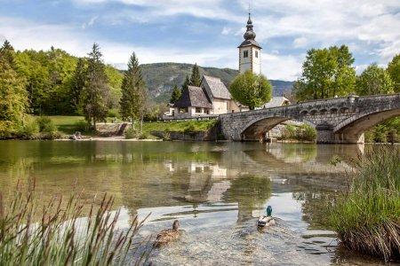 Альпийские озера Блед и Бохинь, авто-пешеходная экскурсия