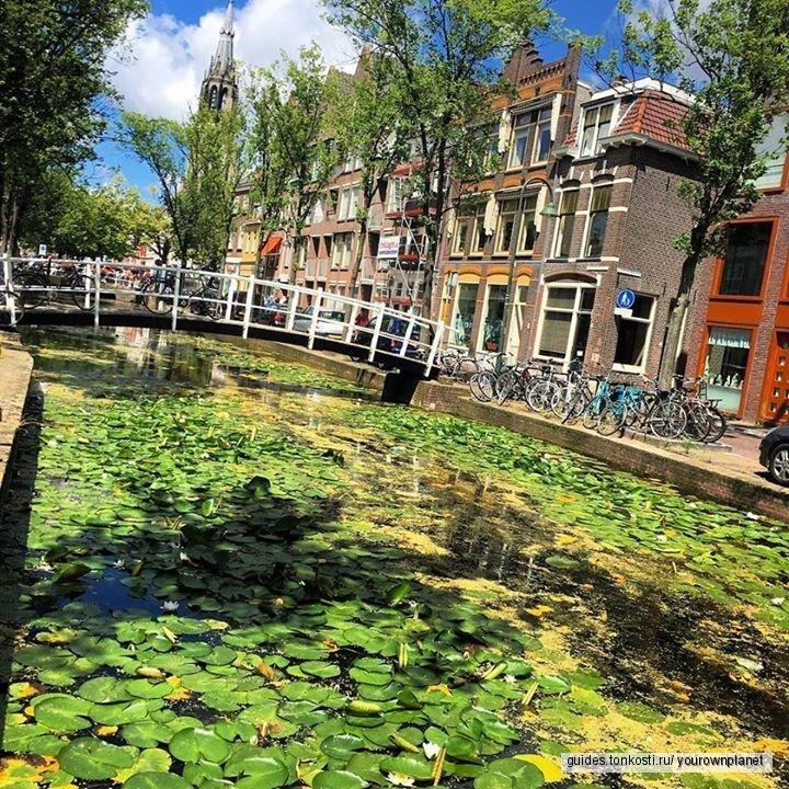 Голландия для своих: Делфт. Шкатулка с секретом