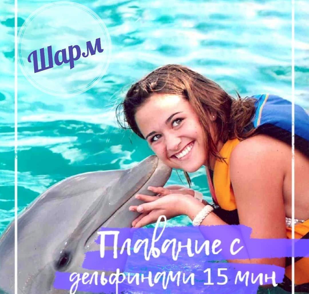 Плавание с дельфинами в дельфинарии (15 минут) Шарм-эль-Шейха