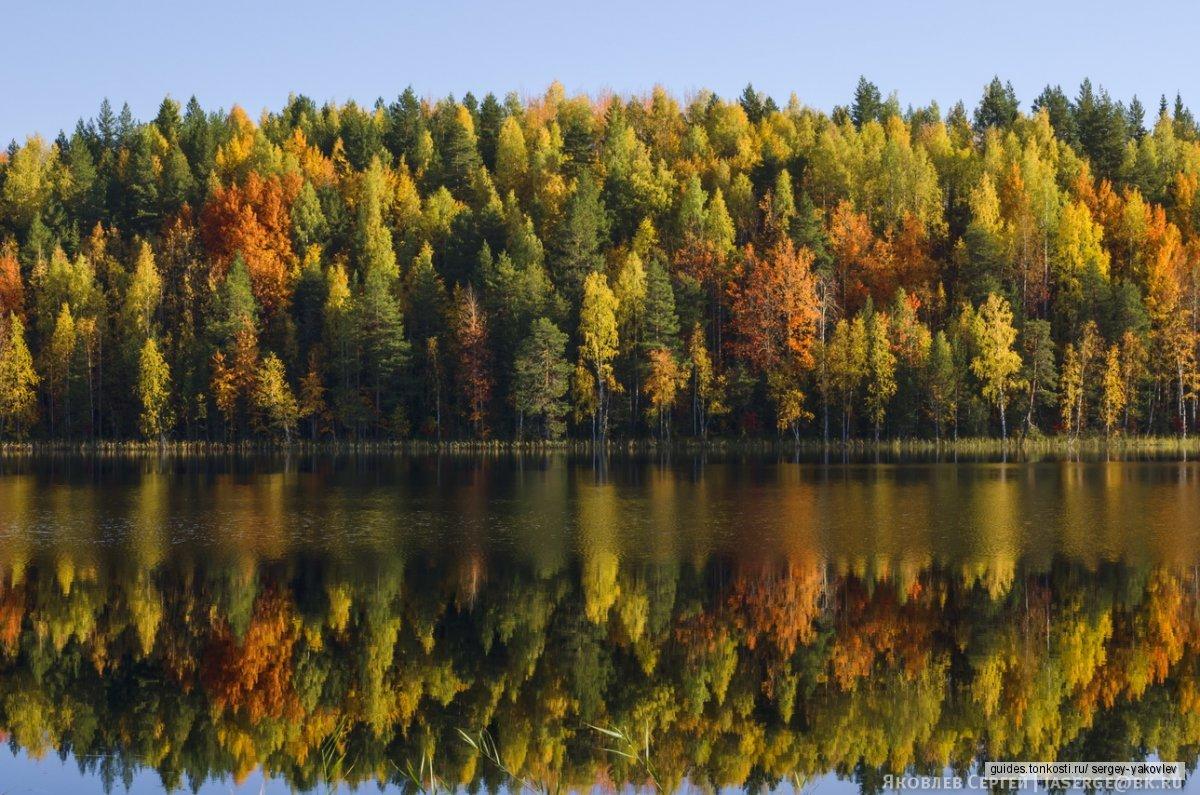 По самой красивой узкоколейке России